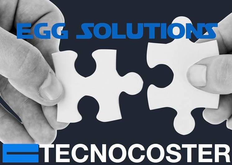 Organizzazione-Tecnocoster1-reference-EGG-Solutions