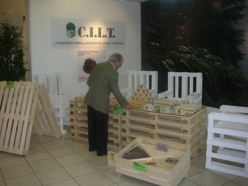 Strategia-CILT7-EGG-Solutions